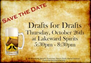 Drafts for Drafts at Lakeward Spirits @ Lakeward Spirits | Buffalo | New York | United States